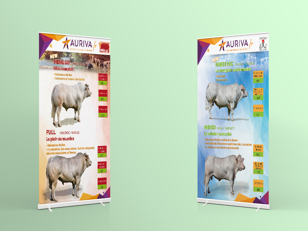 roll-up-kakemono-stand-auriva